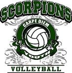 Scorpions Youth Volleyball Club Logo